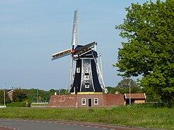 Winterswijk De Bataaf 0726.JPG