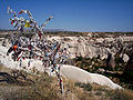Wish Tree - Cappadocia.JPG