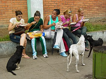 English: Women lunch while dogs wait, Pinar de...