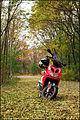 Yamaha Aerox 50.jpg