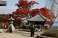 Yoshimine-dera (8256342048).jpg