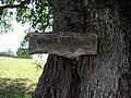 Zibiku azuolo lenta, 2006-08-20.jpg