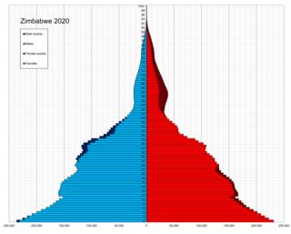 Demographics of Zimbabwe
