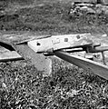 """Drvu""- plug samec, Žužemberk, Cvibelj 1957 (3).jpg"