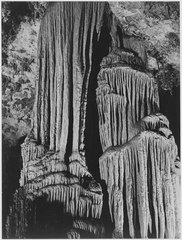 """Large stalagmite and stalactite formations in the King's Chamber, detail, Carlsbad Caverns National Park,"" New Mexico. - NARA - 520044.tif"
