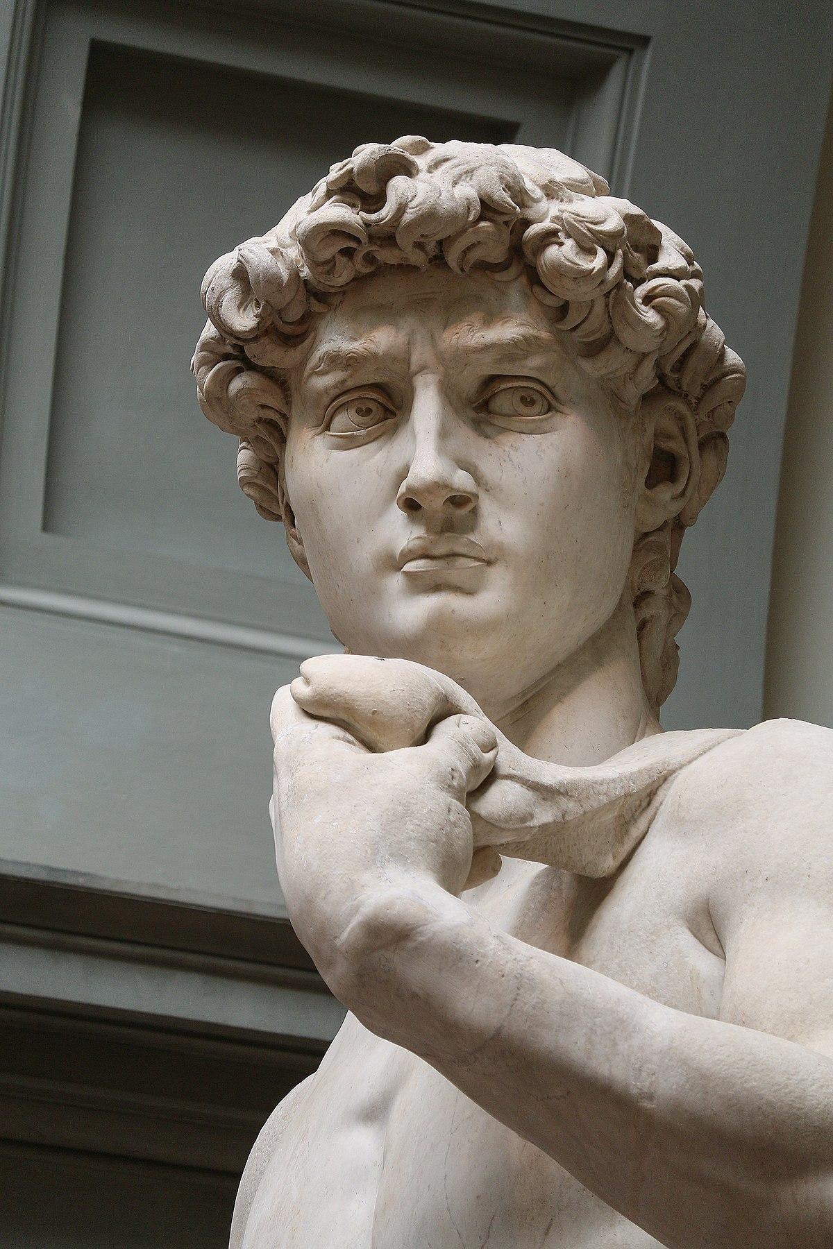 1200px David by Michelangelo Fir JBU008