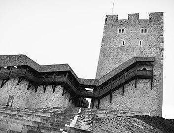 Črno-beli stolp.jpg