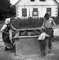 """Črtaličeva mama in Gorišek Anton (83 let) iz Ostroga na sredi vasi pri štirni (vodnjaku). V štirni je """"durg?lč"""" (škripec) 1952.jpg"""