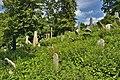 Židovský hřbitov, Boskovice, okres Blansko (11).jpg