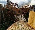 ΚΑΣΤΑΝΕΑ ΒΟΙΩΝ ΛΑΚΩΝΙΑΣ-KASTANEA VION LAKONIAS - panoramio (24).jpg