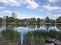 Біле озеро (Київ).jpg