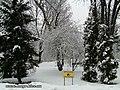 Біля Аскольдової могили - panoramio (1).jpg