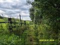 Д.Левено августъ 2008г. - panoramio.jpg