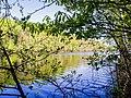 Озеро Подборное - рай для рыболовов.jpg