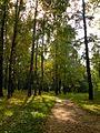 Полянка в Реадовке - panoramio.jpg