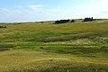Урочище Синие Камни. Вид в южном направлении - panoramio.jpg