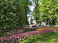 Фестиваль тюльпанов в парке имени Кирова на Елагином острове, цветочная композиция.jpg