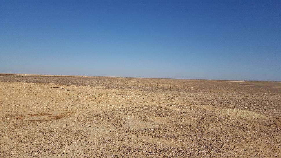 מישור פארן