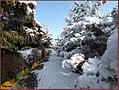 منظره زمستانی از پارک معلم - panoramio (1).jpg
