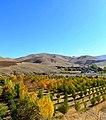 نمای پاییزی از روستای گل تپه - panoramio.jpg