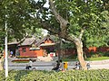 包公园旅游纪念品 - panoramio.jpg