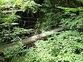吊り橋 2012-08-12 - panoramio.jpg