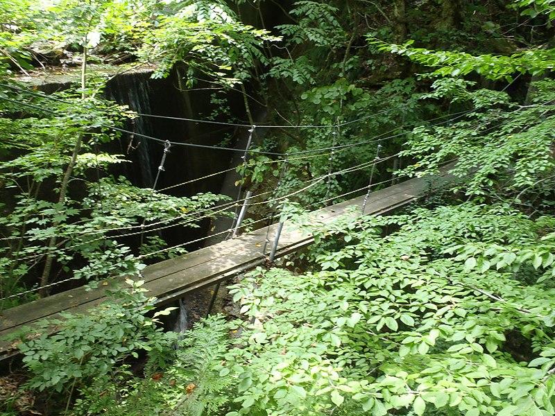 File:吊り橋 2012-08-12 - panoramio.jpg