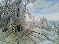 猪苗代湖 天神浜付近 しぶき氷.jpg