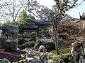 盆景博物馆景色 - panoramio - 江上清风1961 (9).jpg
