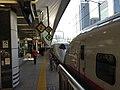 秋田新幹線こまち - 東京駅 - panoramio.jpg