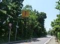 細い道がのびる - panoramio.jpg