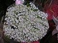 臺灣鮮花 - panoramio - Tianmu peter (8).jpg