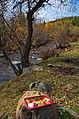 0167 - Nordkorea 2015 - Sinhuangsan - Fluss aus Stein (22343028984).jpg