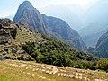 027 Terraces Machu Picchu Peru 2284 (15162647192).jpg