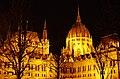 03 2019 photo Paolo Villa - F0197920 (Original)- Budapest - Parlamento - notte - luci - alberi - cupola - Neomedievalismo Neogotico.jpg
