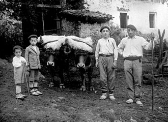 Rural history - Farmers from the Basque Country