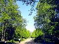 1508. Санкт-Петербург. Удельный парк.jpg