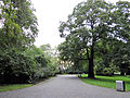 150913 Park Poniatowskiego in Białystok - 02.jpg
