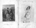 1846 The Rose NY Appleton.png