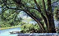 1915 - The Jordan Looking Toward Union Street Bridge - Postcard - Allentown PA.jpg