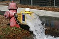 2011-02-12 Fire hydrant flushing 2.jpg