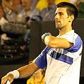 2011 Australian Open IMG 0068 2 (5444729138).jpg