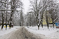 2012-12-25 Volhohradska Street, Kiev - 04.jpg