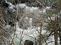 2012.03.25 Koksilah River in spring rapids.jpg