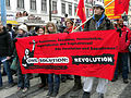 2013-02-16 - Wien - Demo Gleiche Rechte für alle (Refugee-Solidaritätsdemo) - One Solution Revolution.jpg