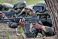 2013. 5 201특공여단 독수리 전문유격훈련. 201 Commando Brigade, Eagle guerrilla training. (8716252560).jpg