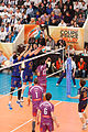 20130330 - Tours Volley-Ball - Spacer's Toulouse Volley - 38.jpg