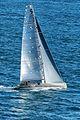 2013 Rolex Fastnet Race GBR 7236 R Ran (9493048833).jpg