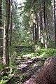 2014-09-04.11-56-04 - panoramio.jpg