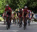 2014 Giro d'Italia, dehaes en van der sande (17166597373).jpg